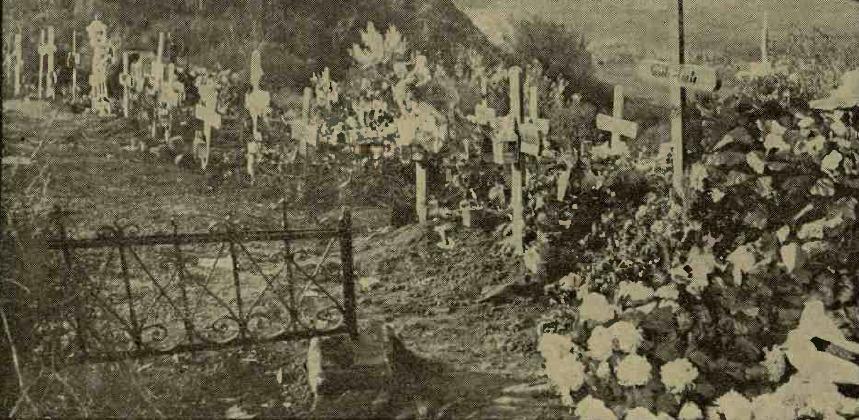 plimbare in cimitirul Bellu
