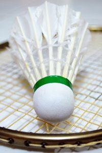 Marilena joaca badminton