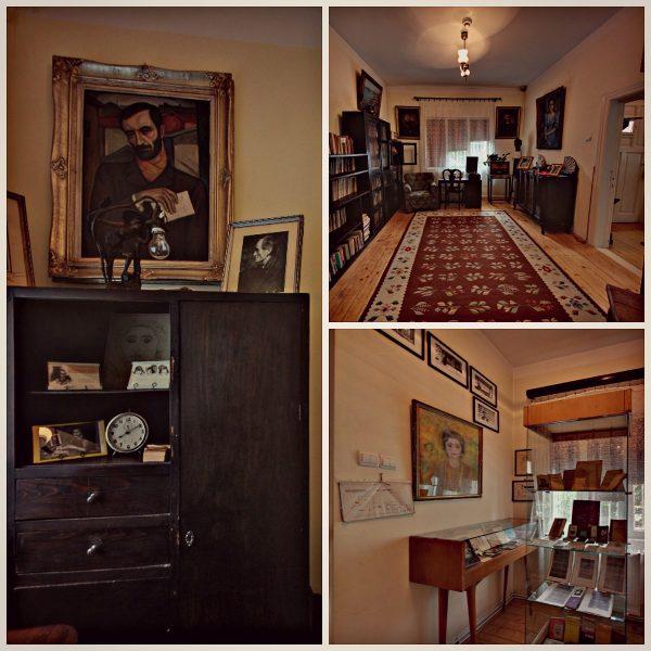 case de vizitat în Berceni Bacovia