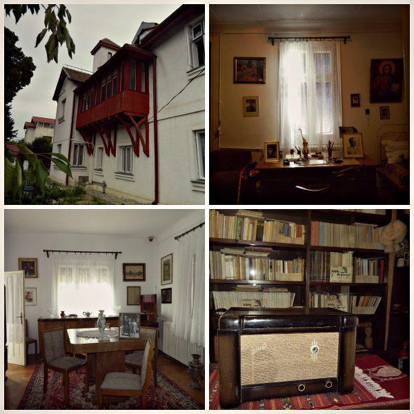 case de vizitat în Berceni Arghezi
