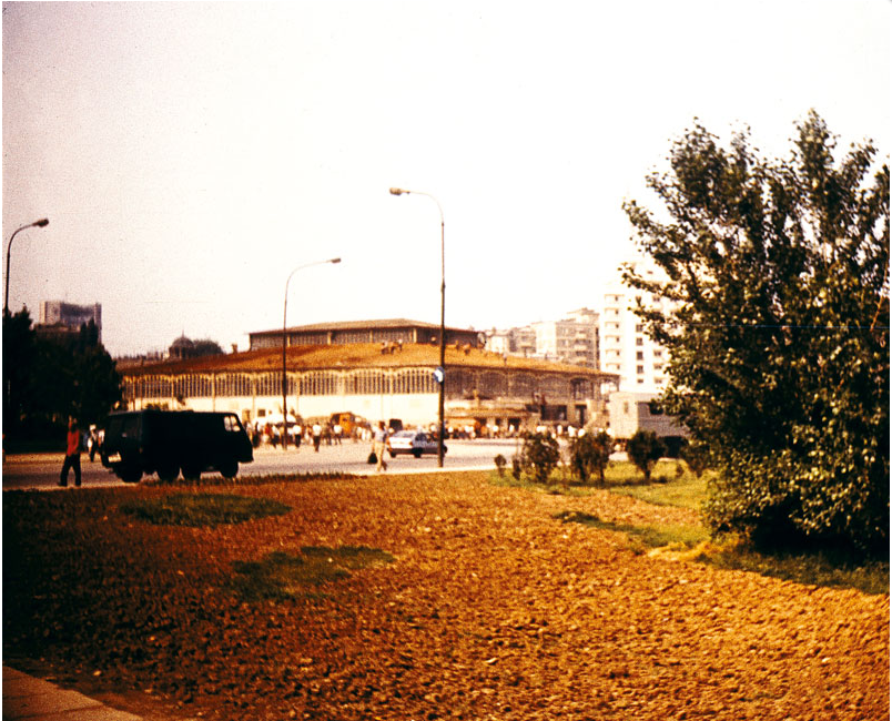 Desfacerea acoperișului Halei Unirii, vedere de la baza Dealului Mitropoliei Foto credit: Mariana Croitoru