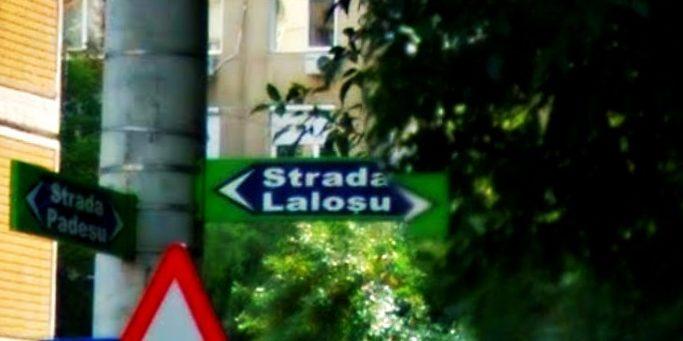 strada lalosu