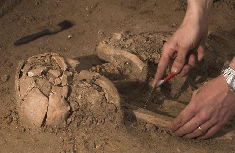 arheologii Parcul Tineretului